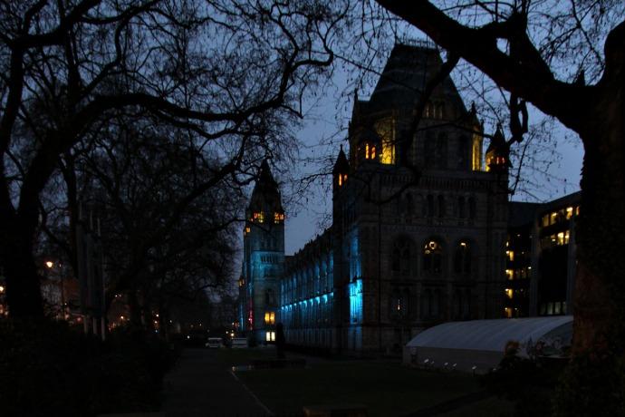 NHM Blue Twilight